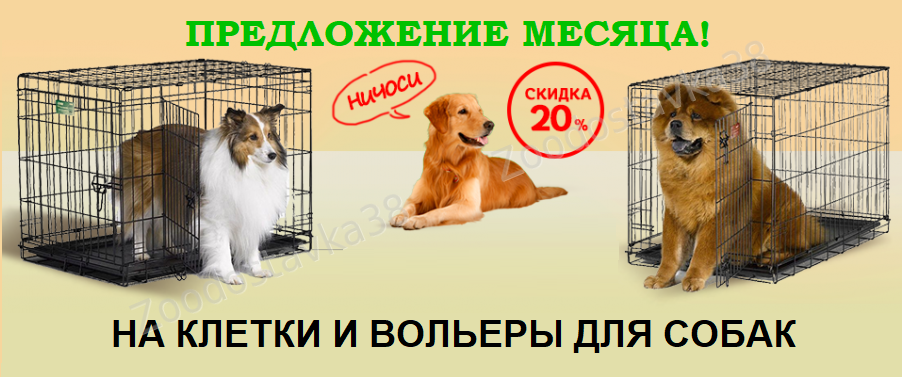 Kletki_sale_june_zoodostavka38
